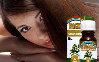 Польза масла чайного дерева для волос – топ лучших рецептов