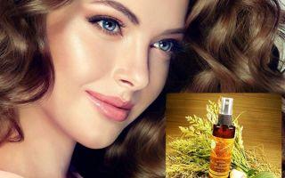 Масло зародышей пшеницы для здоровья и красоты волос