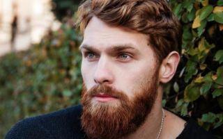 Формы и виды бород у мужчин: описание, особенности, правила выбора