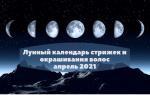 Удачные стрижки в апреле: руководствуемся советами лунного календаря