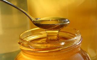 Маска для волос с яйцом и медом: проверенные рецепты