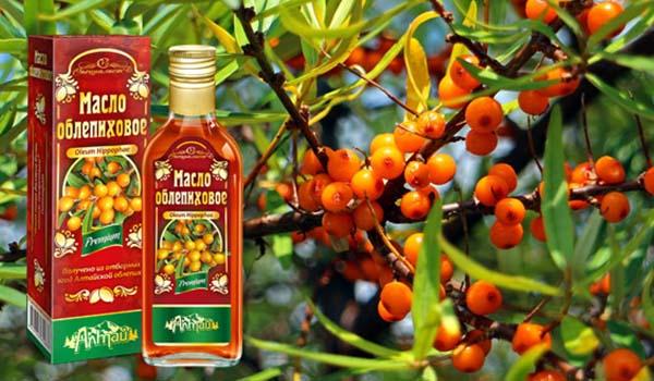 Плоды и масло облепихи