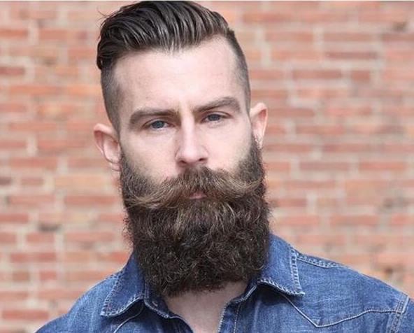 сплошная борода