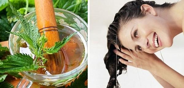 Маска для волос с крапивой